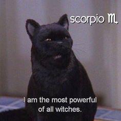 Scorpio And Aquarius Compatibility, Astrology Scorpio, Libra And Pisces, Scorpio Zodiac Facts, Virgo Moon, Taurus Man, Zodiac Traits, Scorpio Quotes, Scorpio Funny