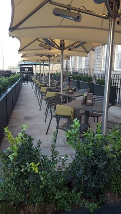 A stunning set of umbrellas from our sister company, Samson Awnings, installed for a large outdoor dining area, equipped with heating for a comfortable and luxurious experience.