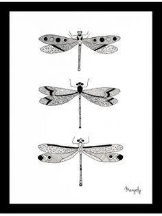 "Original illustration of dragonflies - By Manyoly - Made with China ink ""LIVE LEARN GROW ART ENTRY"" #elementedenartsearch"