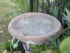 Timeless Treasures: DIY Concrete Elephant Ear Bird Bath