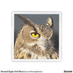 Horned Eagle Owl Photo Serving Tray