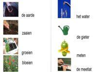 123 Lesidee - LENTE woordkaart