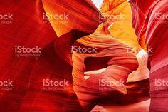 低いレイヨウ Canyon ,Arizona ,米国 ストックフォト・写真素材 78906135 - iStock