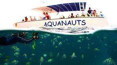 Let one of our dedicated snorkel guides teach you about grenada's underwater world #aquanautsgrenada #scubadiving #rebreather #ccr #wreckdiving #wreck #puregrenada #discovergrenada #grenada #reef #reefdiving #snorkeling #divegrenada  #scubadiver #padi #island360 #paditv #padidiver #scubadivingmag #travel #divetravel #sportdiver #scubapro #sgu #travelandleisure #scubadivers #travelingtheworldd #bg_underwater