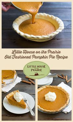 Little House on the Prairie Old Fashioned Pumpkin Pie Recipe - This traditional dessert has been gracing holiday tables for centuries. It's so simple to make, and the taste highlights the best flavors of fall. christmas food ideas for dinner Pumpkin Custard, No Bake Pumpkin Pie, Easy Pumpkin Pie, Pumpkin Pie Bars, Homemade Pumpkin Pie, Pumpkin Dessert, Pumpkin Recipes, Pie Recipes, Dessert Recipes