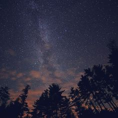 Papers.co wallpapers - nc78-night-sky-stars-milkyway-wood-nature-blue - http://papers.co/nc78-night-sky-stars-milkyway-wood-nature-blue/ - mountain, sky, space