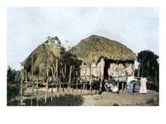Native Houses in Rural Puerto Rico, 1890s