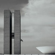 Congresso Nacional - Brasilia . . . . . . #fujifilm #fuji_xseries #travelphotography #fineart #igersbrasil #fuji #architecture #bw #bwarchitecture #midtones #mobilefineart #blackandwhite #bnw #instablackandwhite #monoart #insta_bw #bw_lover #bw_photooftheday #MyFujiFilm  #fujix #fuji_Xe1 #Xe1 #destination_wow #beautifuldestinations by Patrick Silveira