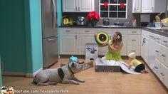 La familia Roombera más viral estrena Roomba 880 customizada: