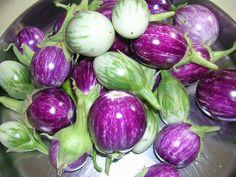 Stir-fried eggplant with a quick Gongura Chutney