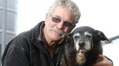 Ältester Hund der Welt gestorben: Maggie erreicht biblisches Alter