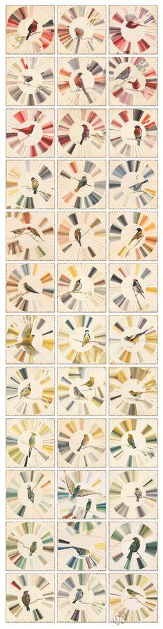 Ellen Heck, Birdwatching Through Spectroscopic Lenses, Flight: Arranged in Color Order
