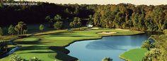 Disney's Palm Golf Course - Gendron Golf