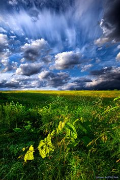 """https://flic.kr/p/nZHWs4 