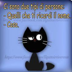 www nero signore micio com