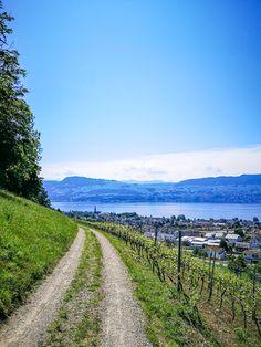 Felder, Berg, Wanderlust, Country Roads, Alps, Switzerland, Hiking, Traveling