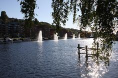 The river and the water fountains, via Flickr. Water Fountains, Norway, River, Photography, Water Sources, Fuentes De Agua, Photograph, Fotografie, Photoshoot