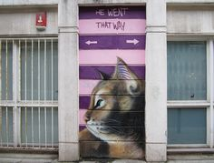 Well, which way did he go? Regardless of the confusion, one thing is sure: this is one cute (and giant!) cat on Cheshire Street in London.