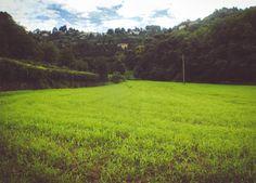 I nostri campi - Val d'Astino (Bergamo)