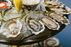 The difference between the pretty okay-est Chicago oyster bars and the BEST Chicago oyster bars? One has oysters, and one has cheap oysters. These are those latter ones, 19 spots shucking deliciously wallet-friendly bivalves. Oyster Restaurant, Best Seafood Restaurant, Oyster Happy Hour, Chicago Restaurants Best, Lobster Fest, Best Oysters, Crab House, Oyster Bar, Ethnic Recipes