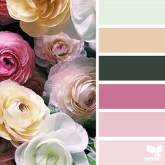 today's inspiration image for { flora hues } is by  @deerdutch ... thank you, Deanna, for sharing your wonderful photo in #SeedsColor !