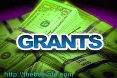 Government Grant for Beekeeping: Grant money for Beekeeping is provided to qualified beekeepers intend to enhance/develop beekeeping in the united states... #beekeepinggrants #beekeepingbusiness