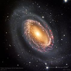 NGC 4725 is a member of the Coma-Sculptor galaxy cluster and lies 12.6 Mpc away from Earth (Gibson et al. 2009, ApJ, 512, 48). This galactic gem is believed to be tidally interacting with the neighbour galaxy NGC 4747 (outside the pictured field), as a neutral hydrogen plume pointing towards NGC 4725 suggests. In the optical,NGC 4725 is dominated by a single spiral arm that seems to originate from an inner ring rich in newborn stars and conspicuous HII regions (in red in the image).