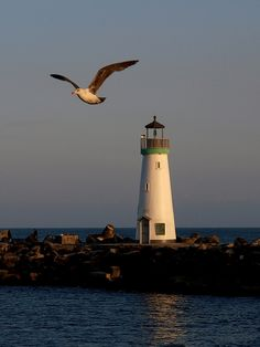 Santa Cruz Harbor Lighthouse, California