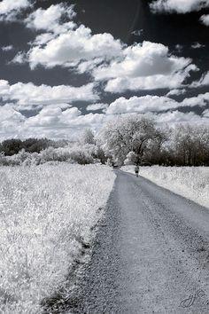 On the Road Again by Evn1ngStar, via Flickr