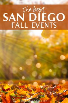 This guide to San Diego in the fall includes the best fall events in San Diego and 10 of the best things to do in San Diego in fall. Get a taste of fall in San Diego with this list of the best fall activities in San Diego California. | best things to do in san diego in the fall | san diego pumpkin patch | pumpkin patches in san diego | san diego things to do in fall | san diego in the fall | san diego fall activities San Diego Activities, San Diego Events, San Diego Travel, Fall Cleaning, Self Actualization, Autumn Activities, California Travel, You Changed, Things To Do
