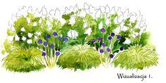 Garden S, Home And Garden, Garden Ideas, Plant Design, Garden Design, Growing Lavender, Plan Sketch, Black Eyed Susan, Horticulture