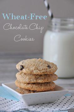 Wheat Free Chocolate Chip Cookies
