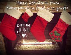 December pregnancy announcement!
