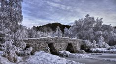 (C)old bridge - From January this year, it was a cold experience taking pictures here. - 25 degrees