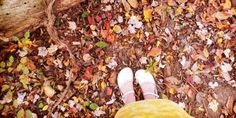"""Enjoying a walk in Autumn's glory with my Soft Stars."" From Tryphena in Manassas, VA."