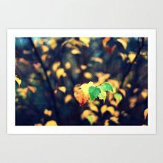The last green Art Print by Annie Japaud   - $18.72 Green Art, Annie, Northern Lights, Art Prints, Nature, Image, Art Impressions, Naturaleza, Nordic Lights
