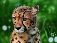 Cheetah art