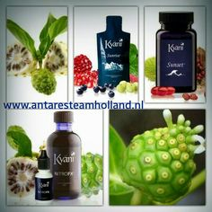 Kyäni products include Wild Alaskan Blueberry. Noni. And many more vitamines minerals and anti oxidants.