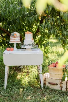 #peach #orange #coral #wedding #inspiration // Southern Weddings // Photography: Erin Wilson Photography