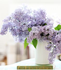 Lilac, so pretty- I just want to sniff it!
