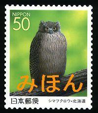 シマフクロウ-Japán
