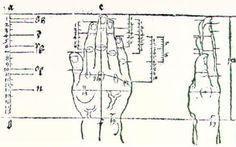 Hand - Albrecht Durer