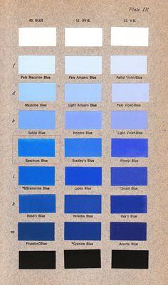 Write essay color blue