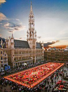 Oferte turistice Belgia