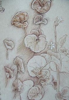Cyclamen leaves by Luis Vargas Saavedra Pen and ink