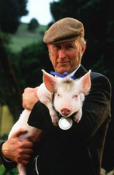 """""""Babe"""" a pig raised by sheepdogs, learns to herd sheep with a little help from Farmer Hoggett. Starring James Cromwell and Christine Cavanaugh as the voice of Babe. """"That'll do pig. Babe 1995, Rachel Griffiths, James Cromwell, Little Pigs, The Villain, Actors, Great Movies, Awesome Movies, I Movie"""