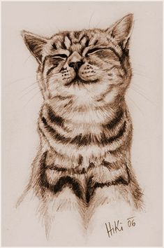 A drawing of a cat. Just a quickie. I got the motive from a whiskas cat-food can. My cat also looks like this cat.
