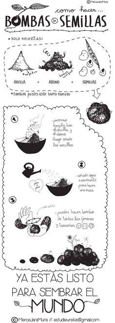 Nendo Dango - Infografía  Bombas de Semillas