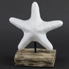 love this Starfish! puuuurfect for my beach themed guest ladies room