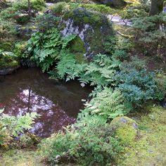 Western and reductionist view of the Japanese garden   Niwaki et Niwashi